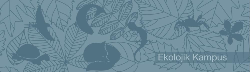 ODTÜ Ekolojik Kampüs Projesi