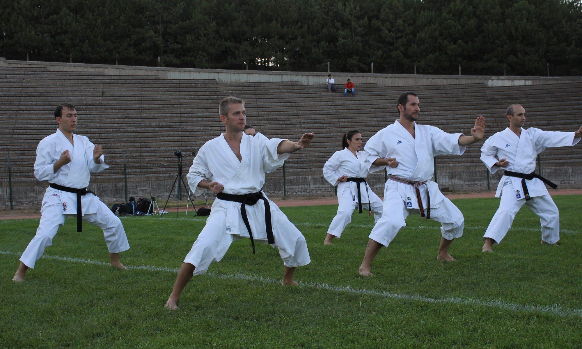 ODTÜ Karate-Do
